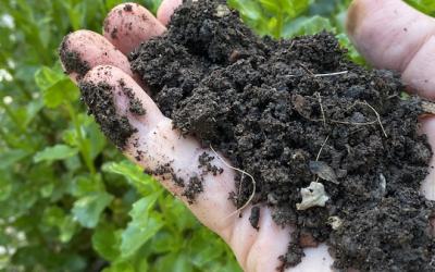 No-Turn Composting: Build a Bio-Reactor!